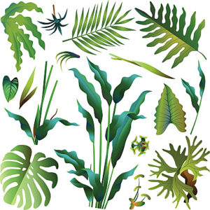 various green tropical rainforest leaves